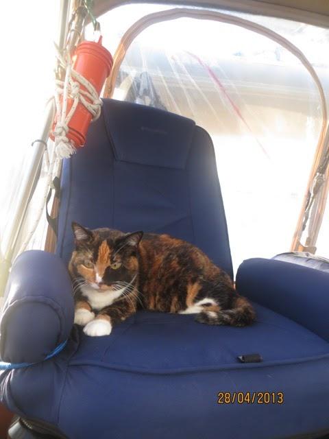 Les aventures de misty caramilk prend la chaise du for Chaise du capitaine