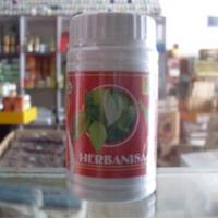 obat herbal menormalkan haid