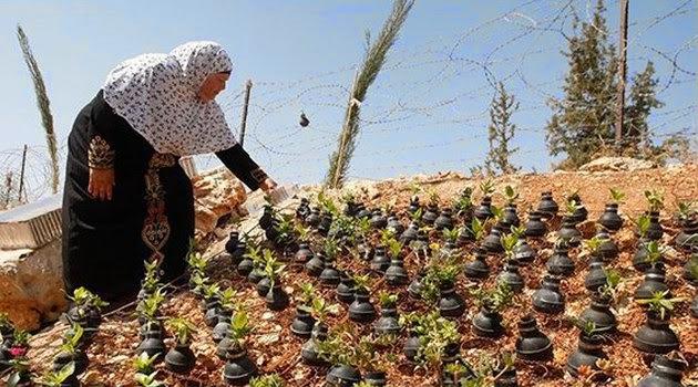 Hebat, Wanita ini Membuat Pot Bunga dari Granat Bekas