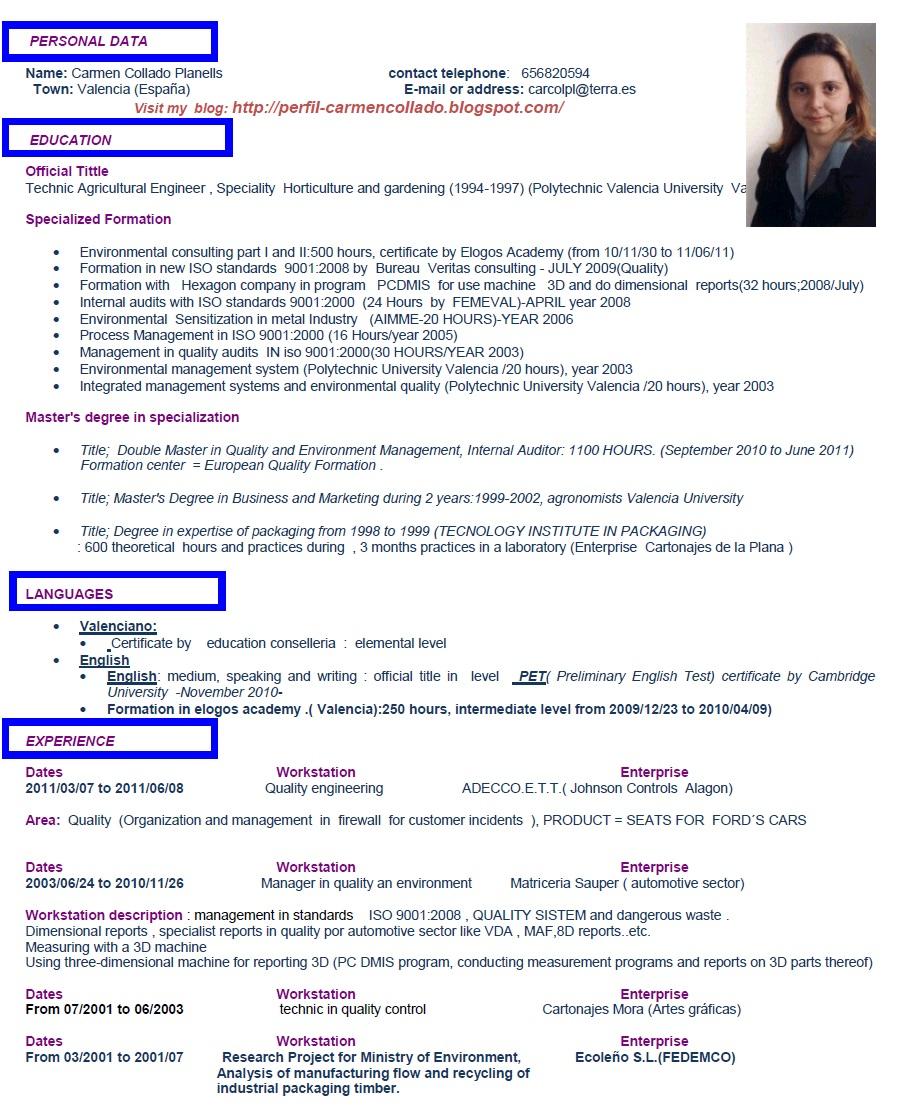 Famoso Qué Es Un Resumen Profesional En Un Currículum Molde ...