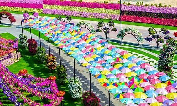 Beautiful Flower Garden aralsacom