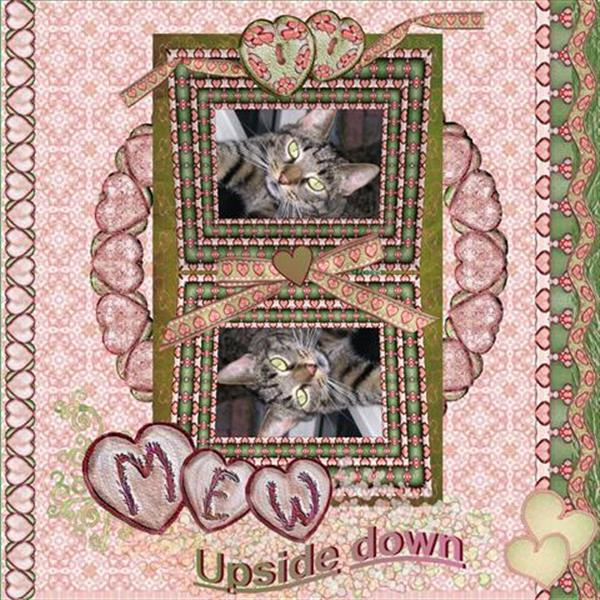 Mew up side down