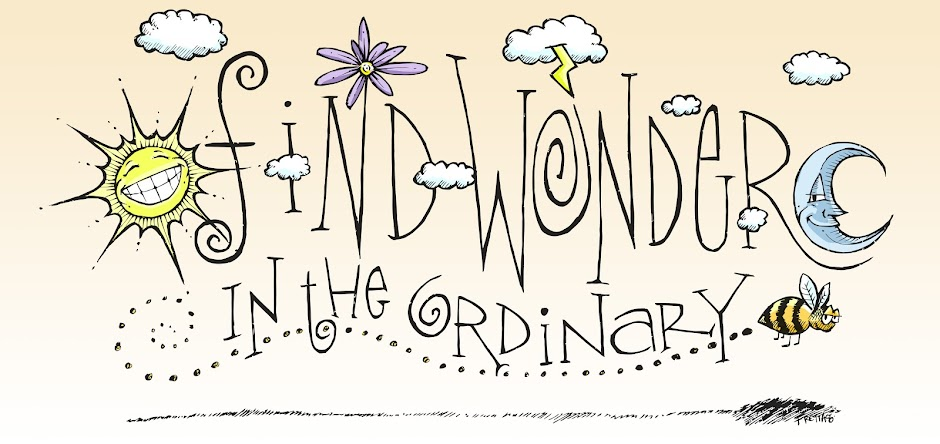 Find Wonder in the Ordinary