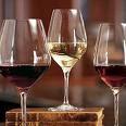 salud con los mejores vinos del mundo