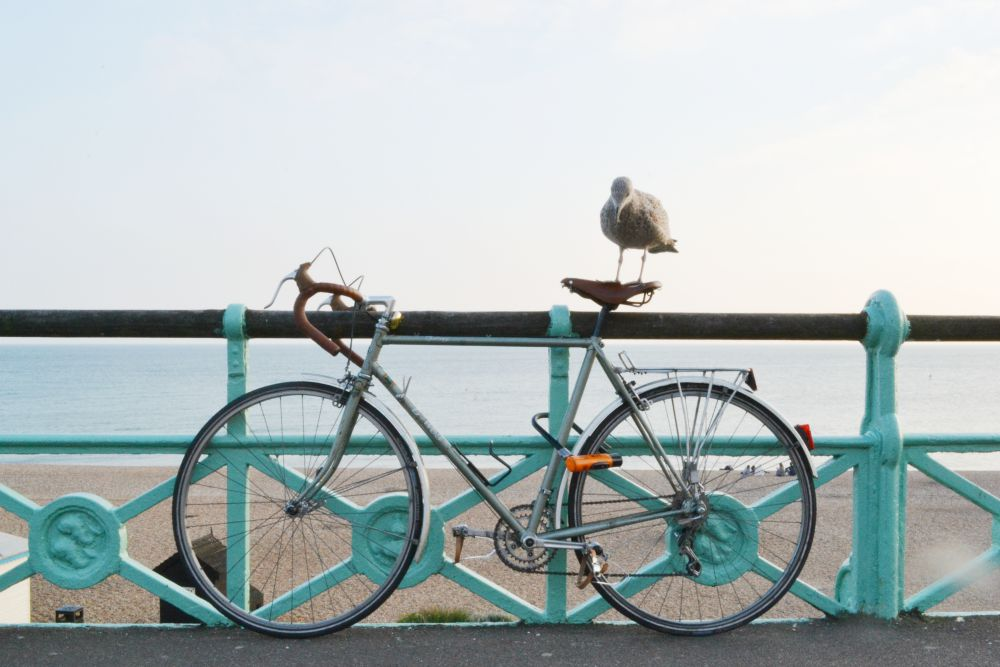 seagull bike vintage seaside promenade