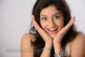 Tanvi Vyas Studio Photo Shoot Gallery-thumbnail-1