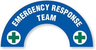 Organizing Of Emergency Response