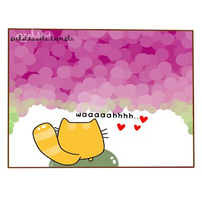 doodle,taman,kucing