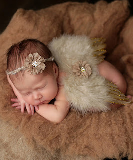 Newborn Angel Wings, Photo Shoot