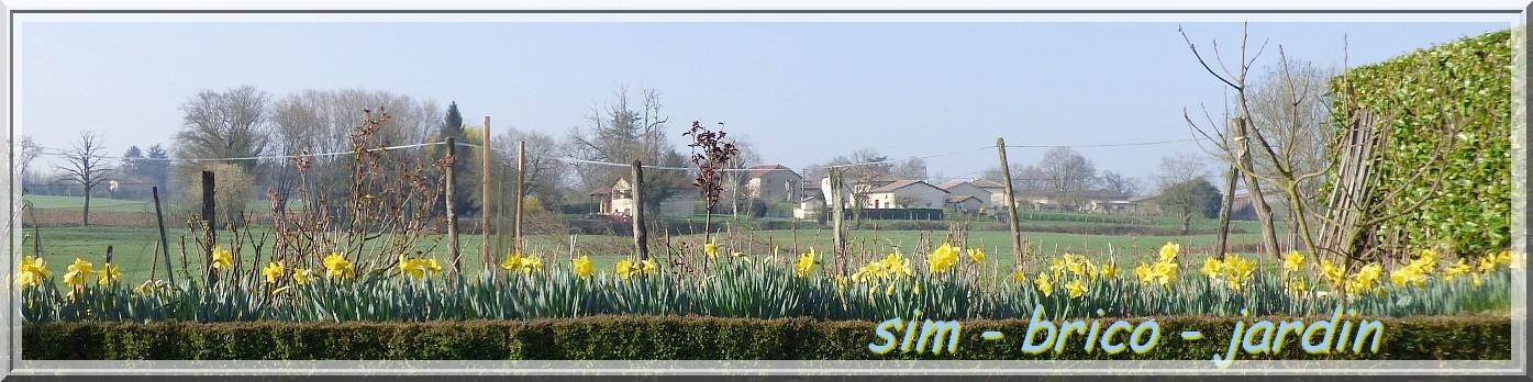 sim-brico-jardin