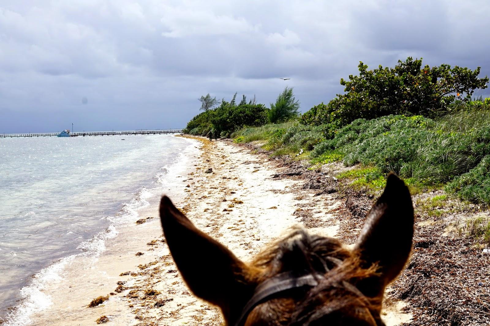 horse riding in cuba