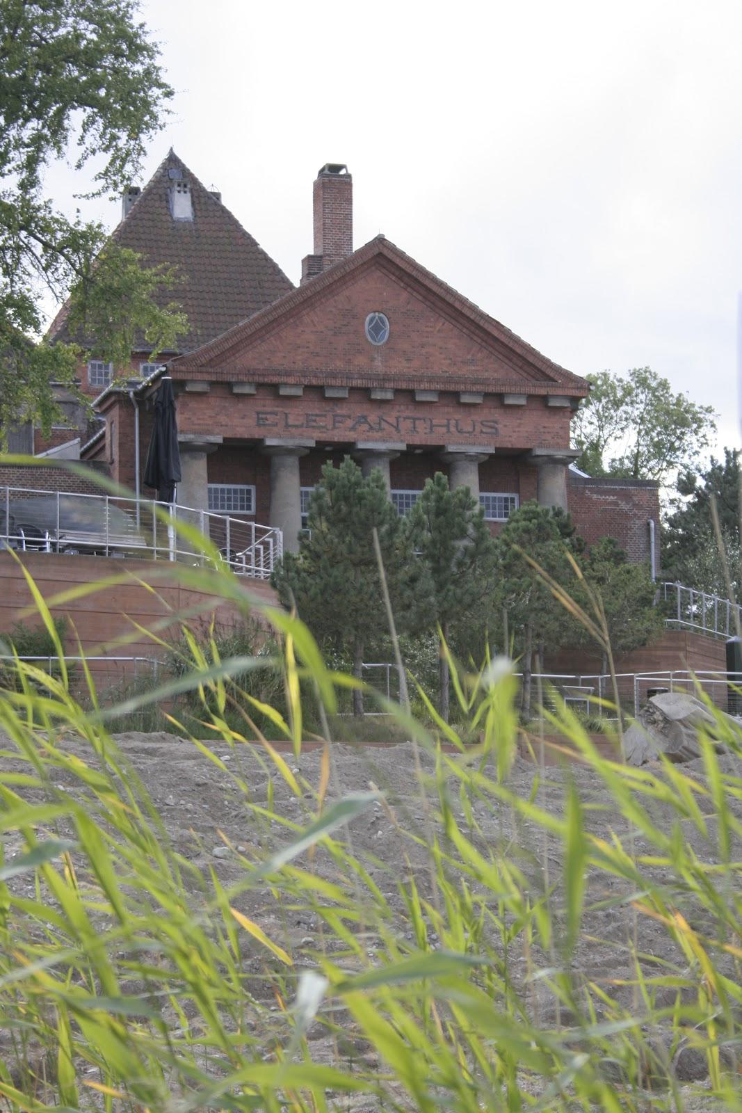 Öarnas trädgårdsplanering: september 2012