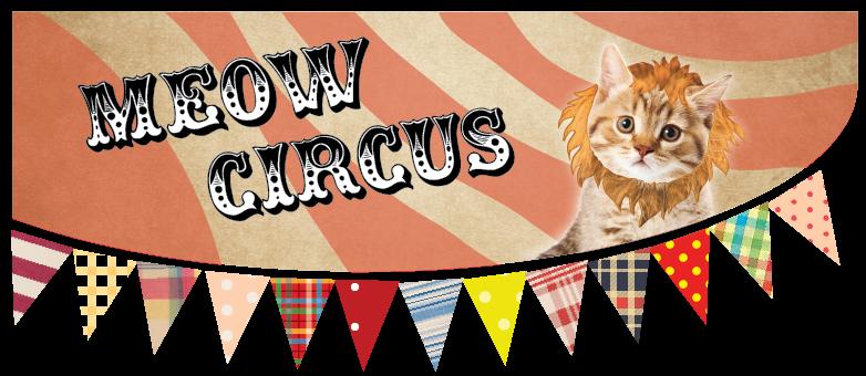Meow Circus