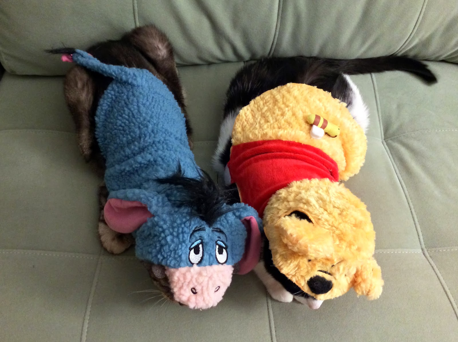 your daily cute: pimp and moo's halloween costumes - eeyore and pooh!