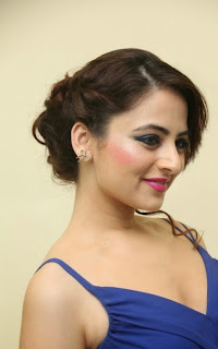Actress Zoya Afroz Picture Gallery in Blue Long Dress  47.jpg