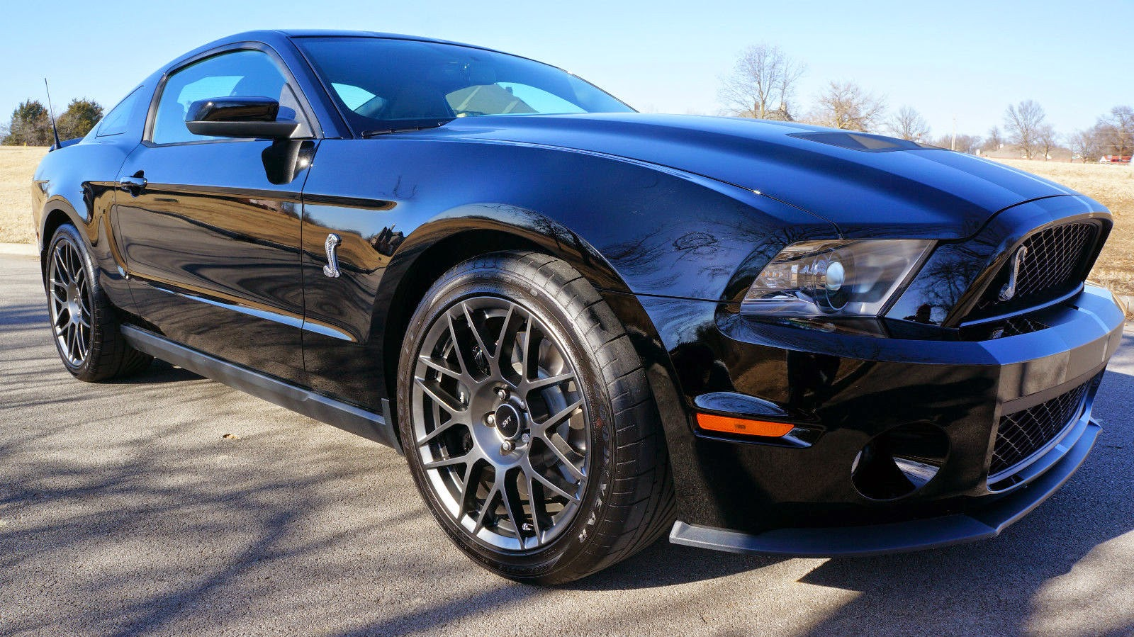 2012 ford mustang shelby cobra gt500 for sale american muscle cars