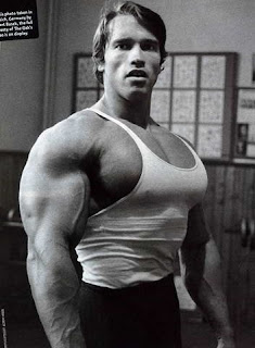 26 s Как накачать мышцы рук   методики тренировок