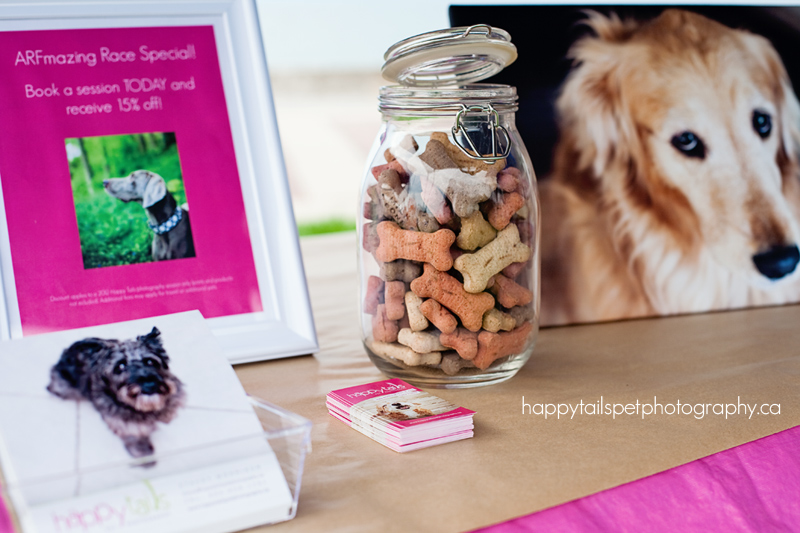 Dog biscuits, business cards and artwork sit on the Happy Tails Pet Photography table at the 2012 Burlington Humane Soceity ARFmazing Race fundraiser in Spencer Smith Park, Ontario..