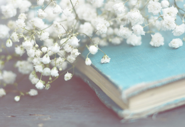 Vintage Book & Baby's Breath ~ Andrea Hurley #photography #vintage #turquoise