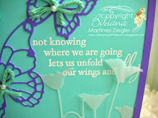 butterfly frame sentiment