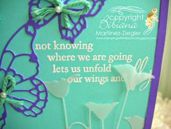 butterfly frame sentiment