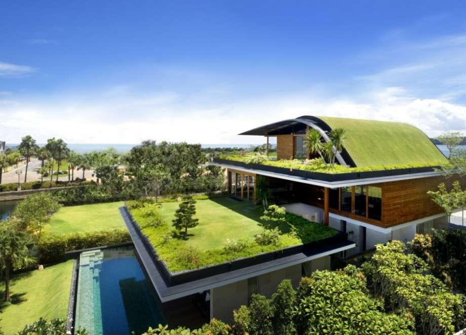 Organic architecture meera house Organic house
