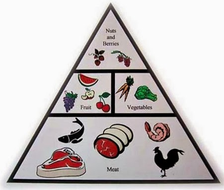 Apa itu Diet Paleo dan Hubungannya Dengan Jerawat - Cure ...