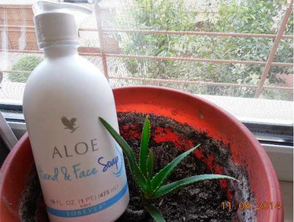 Aloe Hand & Face Soap - sapun lichid