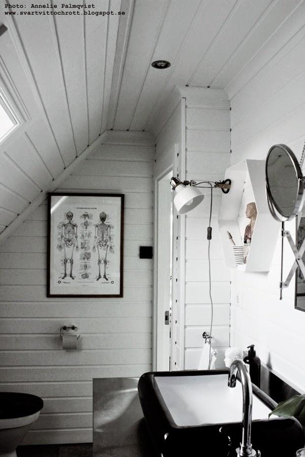 naturvetenskap, plansch med människans skelett, skelettet, planscher, badrum, naturvetenskapen, kroppen, kroppens, skelettet, axelssons shop, loppisfynd, loppis, industriellt, industristil, svart och vitt, svartvita,