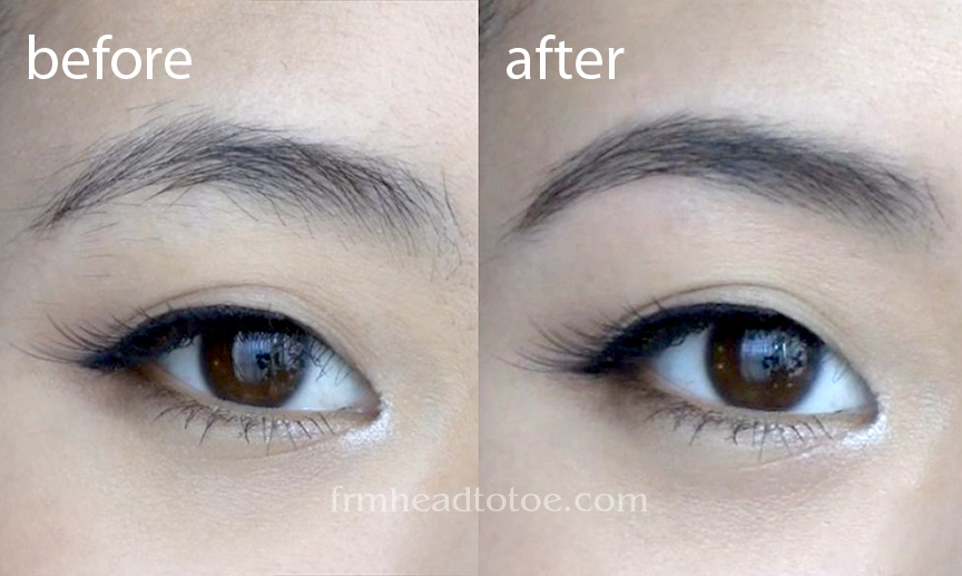 Basics Perfect Brows Tutorial From Head To Toe