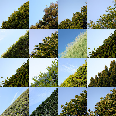 Photo by Kate Whiteman, blue meets green, symmetry