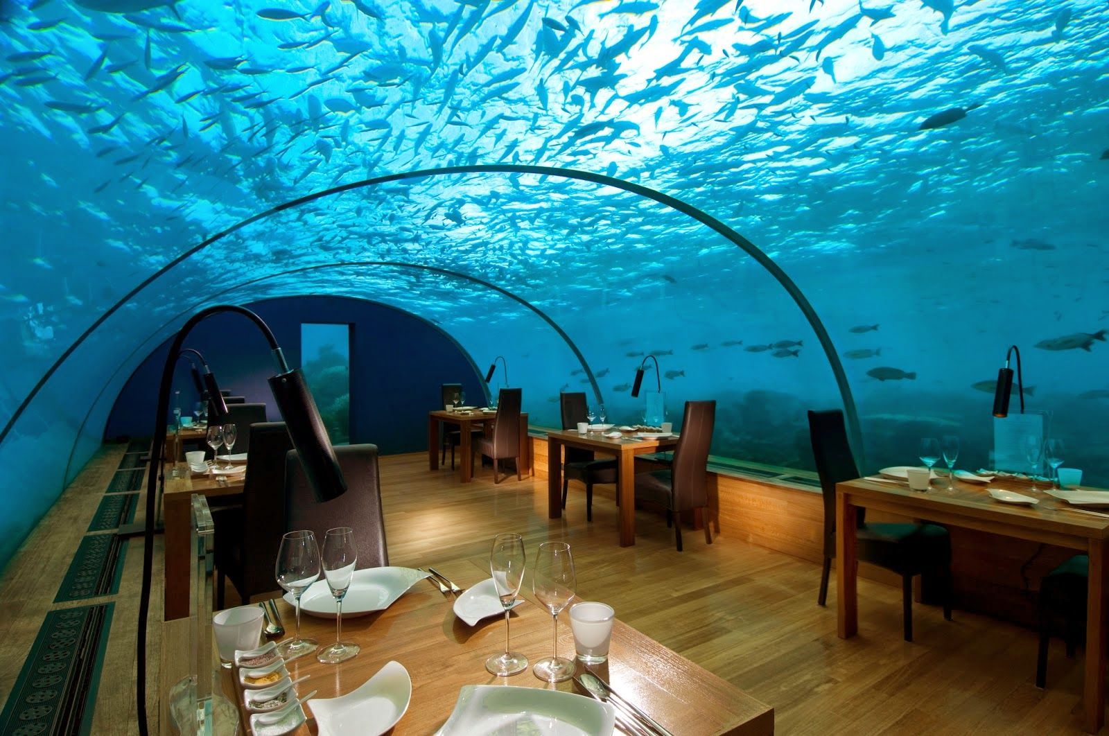 Passion for luxury 10 most beautiful restaurants in the for Ithaa restaurant maldives