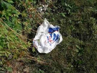 Los Angeles se torna a maior cidade dos EUA a proibir os sacos plásticos