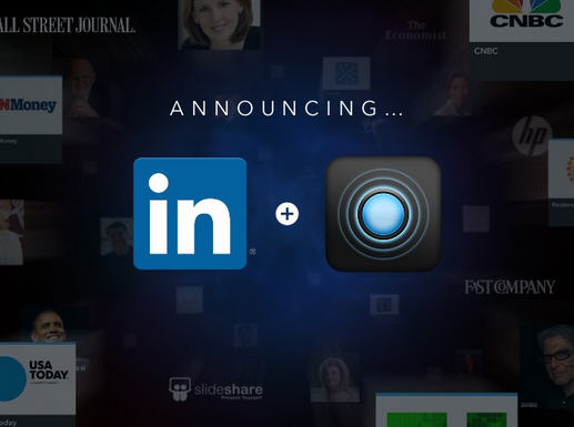 "The professional social network LinkedIn has acquired ""Pulse"", a news aggregator, RSS feeds and a platform for exchange"