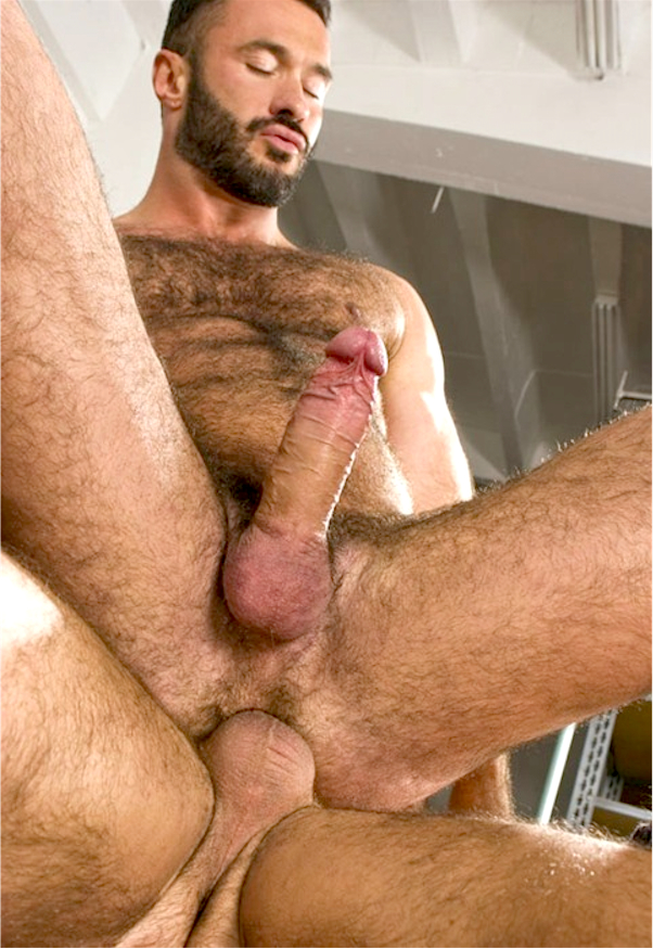 Hairy men in gay porn