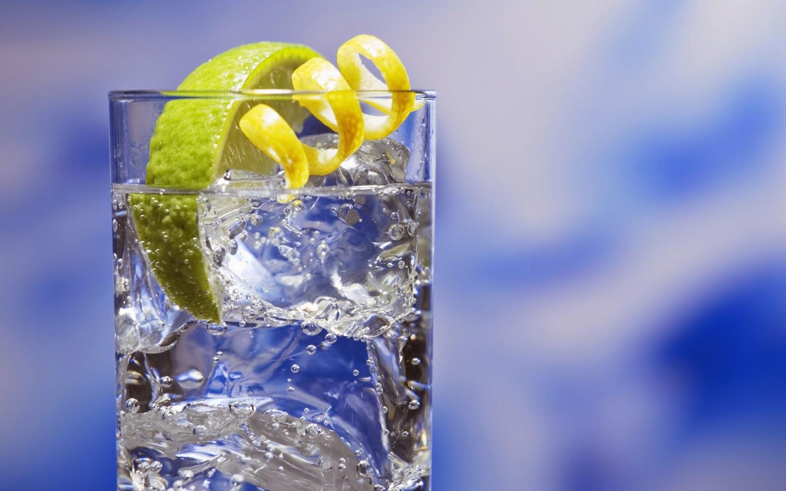 gin 6 tonic africa namibia