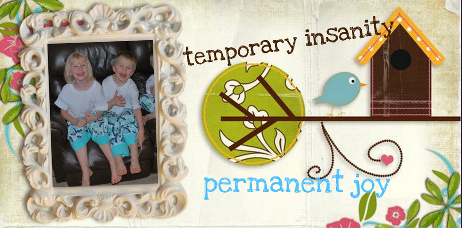 Temporary Insanity, Permanent Joy