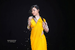 Neelam-Upadhyay-Stills-in-Yellow-Saree