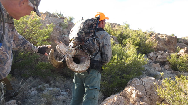 Arizona+Desert+Bighorn+Sheep+Hunting+in+Unit+22+with+Colburn+and+Scott+Outfitters+10.JPG