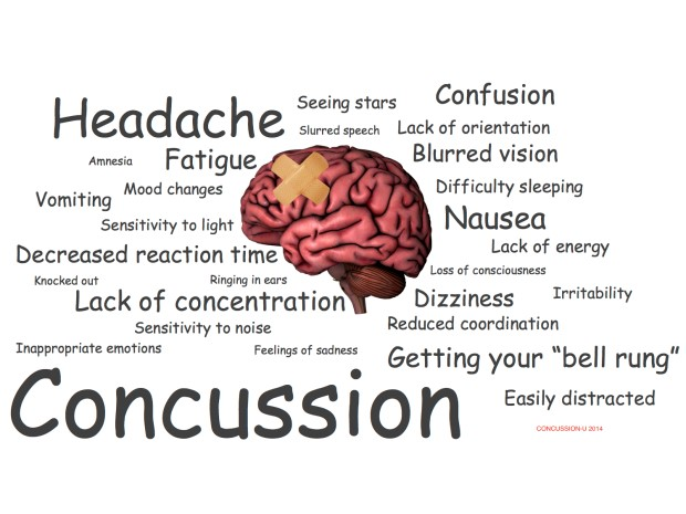 Pro Chiropractic Concussions