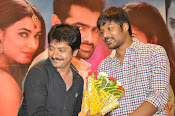 Pandaga Chesko platinum disk photos-thumbnail-20