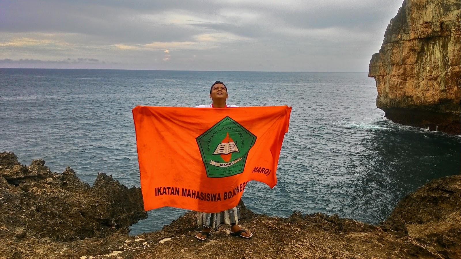 Lambaian Sang Orange Ditepi Samudra Hindia