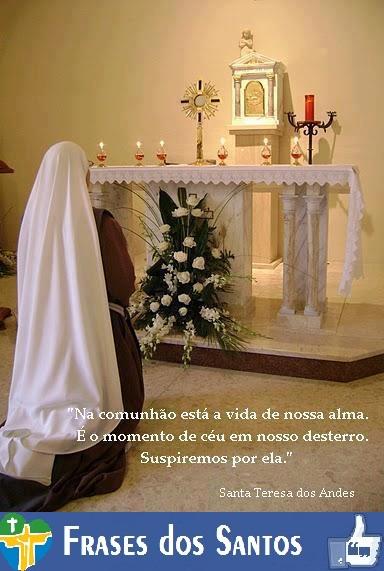 Santa Teresa Dos Andes Frases Dos Santos
