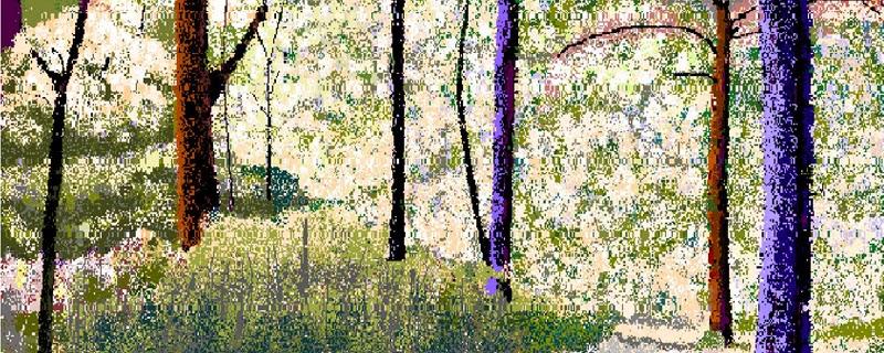 Hal Lasko el pintor de píxeles