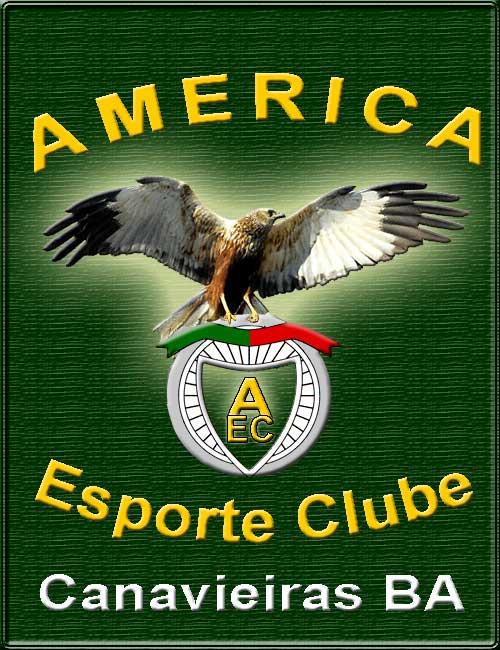 america esporte clube canavieiras ba br logos