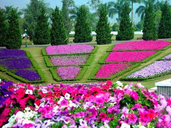 Jelajah istana cipanas dan taman bunga nusantara sahabat for Free flower garden designs and layouts