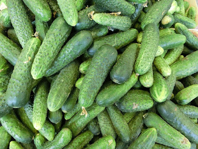 Health Benefits of Cucumber During Pregnancy