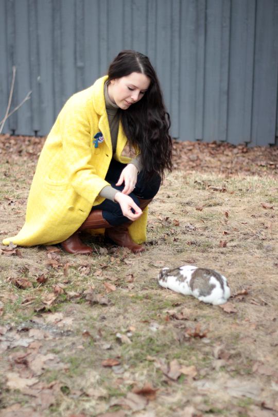 yellow coat and white rabbit