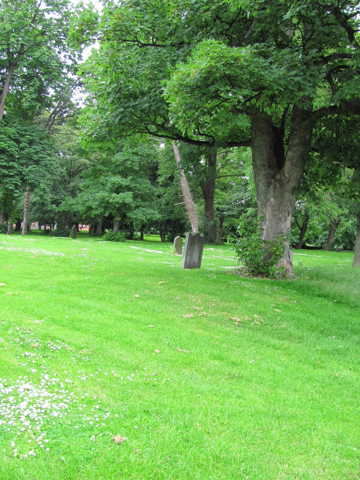 Bully's Acre Cemetery in Kilmainham, Dublin