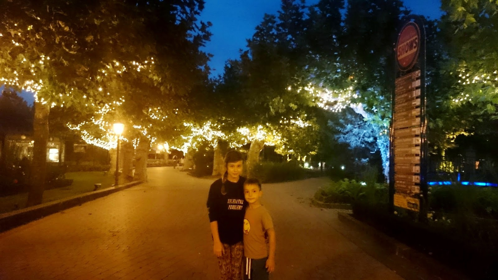 lampki na drzewie,europa park
